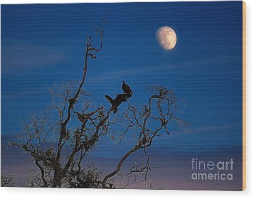 Moonrise Perch Wood Print