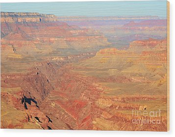 Morning Colors Of The Grand Canyon Inner Gorge Wood Print by Shawn O'Brien