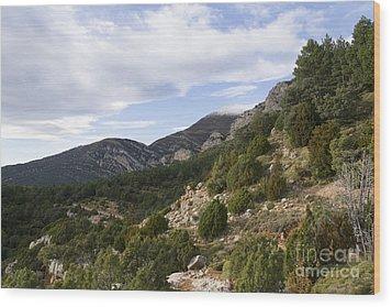 Mountain Landscape In Huesca Wood Print