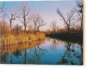 Wood Print featuring the photograph November by Daniel Thompson