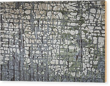 Old Painted Wood Abstract No.6 Wood Print by Elena Elisseeva