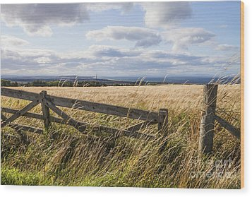 Open Gate Wood Print