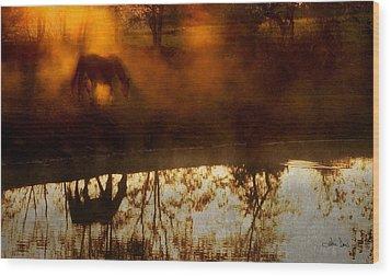 Wood Print featuring the photograph Orange Mist by Joan Davis