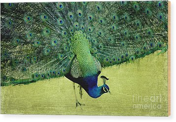 Peacock Plume Wood Print by Linde Townsend
