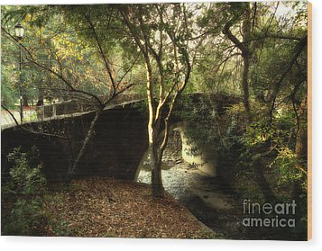 Pedestrian Bridge And Strawberry Creek  . 7d10152 Wood Print by Wingsdomain Art and Photography