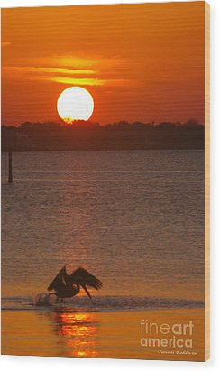 Wood Print featuring the photograph Pelican Sunset by Tannis  Baldwin