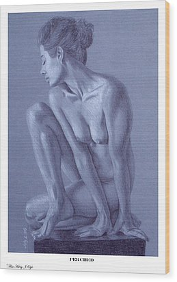 Wood Print featuring the painting Perched  by Joseph Ogle