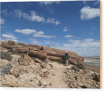 Petrified Forest, Argentina Wood Print by Science Photo Library