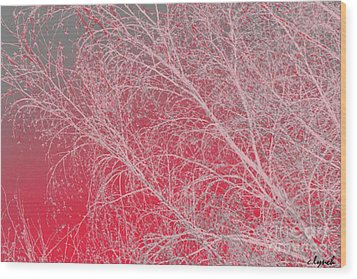 Pink  Wood Print by Carol Lynch