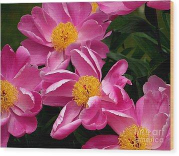 Pink Petals Wood Print by Eunice Miller