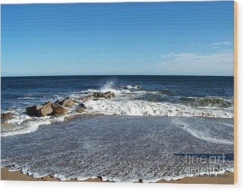 Wood Print featuring the photograph Plum Island Landscape by Eunice Miller