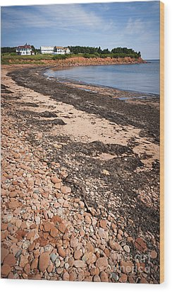 Prince Edward Island Coastline Wood Print by Elena Elisseeva