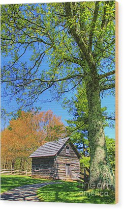 Puckett's Cabin Wood Print by Paul Johnson