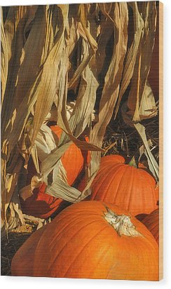 Pumpkin Harvest Wood Print by Joann Vitali