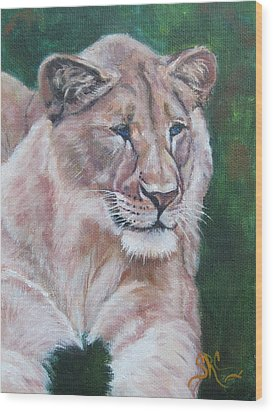 Queen Of The Beast,lioness Wood Print