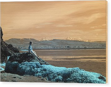 Wood Print featuring the photograph Quiet Beach by Rebecca Parker