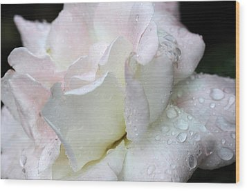 Rain Washed Wood Print by Wanda Brandon