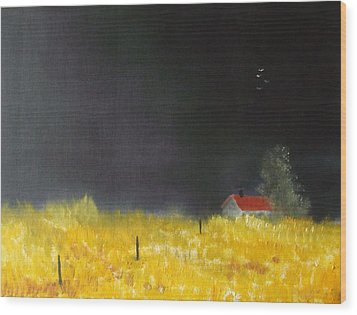 Red Barn Wood Print by Andy Davis