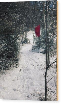 Red Glove Wood Print by Joana Kruse