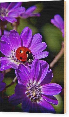 Red Lady In Lavender Wood Print