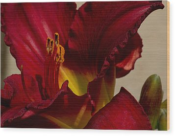 Wood Print featuring the photograph Red Lily by Ivete Basso Photography