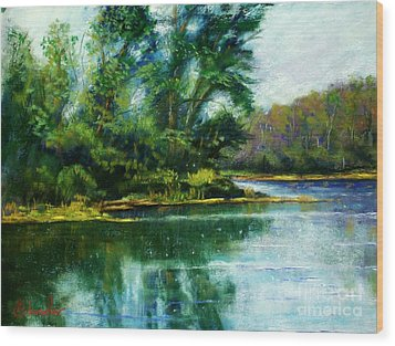 Reflections Wood Print by Bruce Schrader