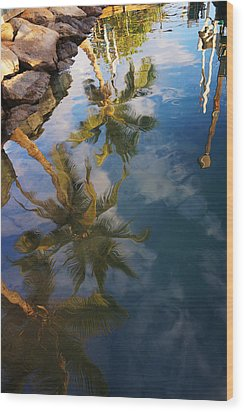 Reflections Wood Print by James Roemmling
