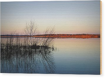 Reflections On Lake Jackson Tallahassee Wood Print