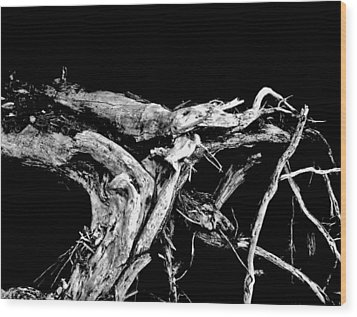 Wood Print featuring the photograph Roots 1 by Amar Sheow