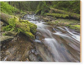 Rush Rush Wood Print by Jon Glaser