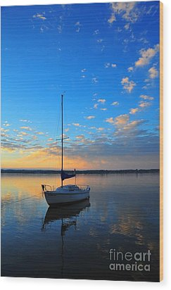 Wood Print featuring the photograph Sailing 2 by Terri Gostola