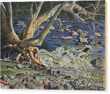Sedona Dry Beaver Creek Sycamore Wood Print