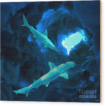Shark Cave Wood Print by Steed Edwards