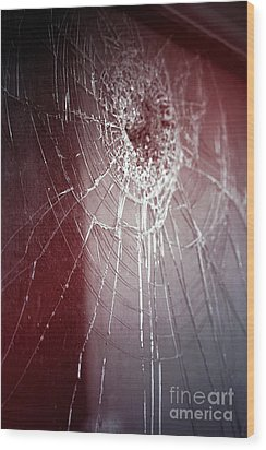 Shattered Dreams Wood Print by Trish Mistric