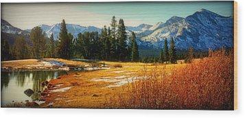 Sierra Panorama Wood Print by Lynn Bawden