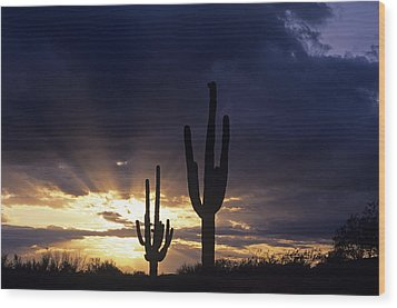 Silhouetted Saguaro Cactus Sunset At Dusk Arizona State Usa Wood Print