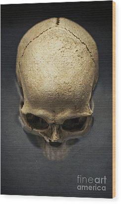 Skull  Wood Print by Edward Fielding