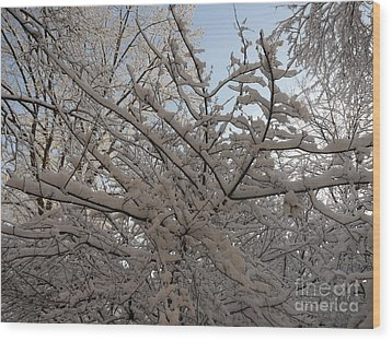 Snow Covered Tree And Sun Wood Print