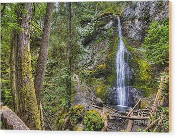 Sol Duc Falls Wood Print by Twenty Two North Photography