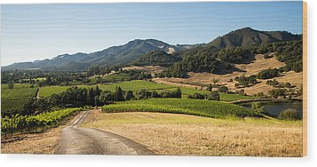 Sonoma Valley Wood Print by Clay Townsend