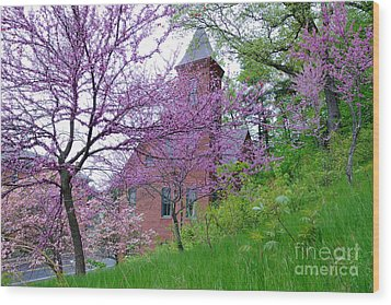 Spring Colors Wood Print by Edward Sobuta