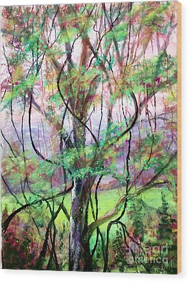 Spring For Fox Grapes Wood Print by Bruce Schrader