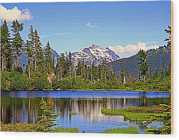 Spring In The Cascades Wood Print