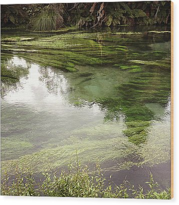 Spring Water Wood Print by Les Cunliffe