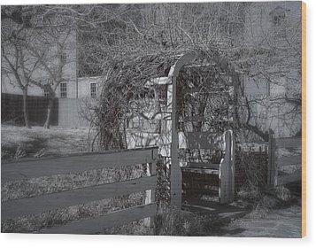 Strawbery Banke  Wood Print by Joann Vitali