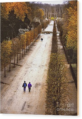 Strolling Versailles Wood Print by Barbara D Richards