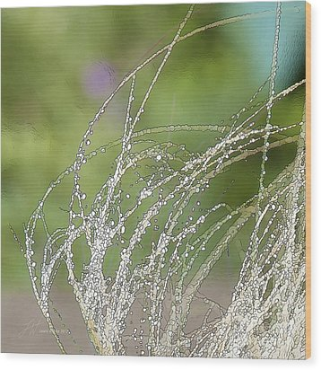 Summer Grass Wood Print by Artist and Photographer Laura Wrede