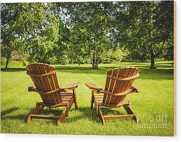 Summer Relaxing Wood Print by Elena Elisseeva