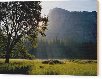 Summer Sunrise In Yosemite Valley Wood Print