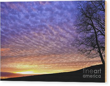 Sunrise Drama Wood Print by Thomas R Fletcher